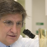 USC Neuroscientists to Map Gene Expression