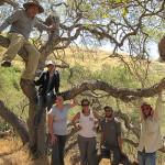A Trail-Blazing Summer Internship