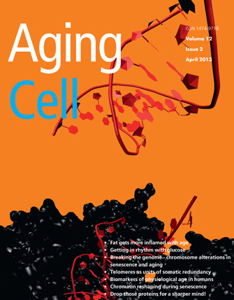 The cover image of Aging Cell shows a common type of genetic damage to a cell when breaks occur in both strands of DNA. (Photo/Courtesy of Aging Cell)
