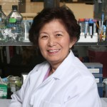 University Professor Jean Shih, senior author of the study (Photo/Lee Salem)