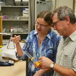 William Berelson, chair of the Department of Earth Sciences at USC Dornsife, collaborates at the high-vacuum line in his laboratory with Maria Prokopenko, who was lead author of a recent paper appearing in Nature. (Photo/Erica Christianson)