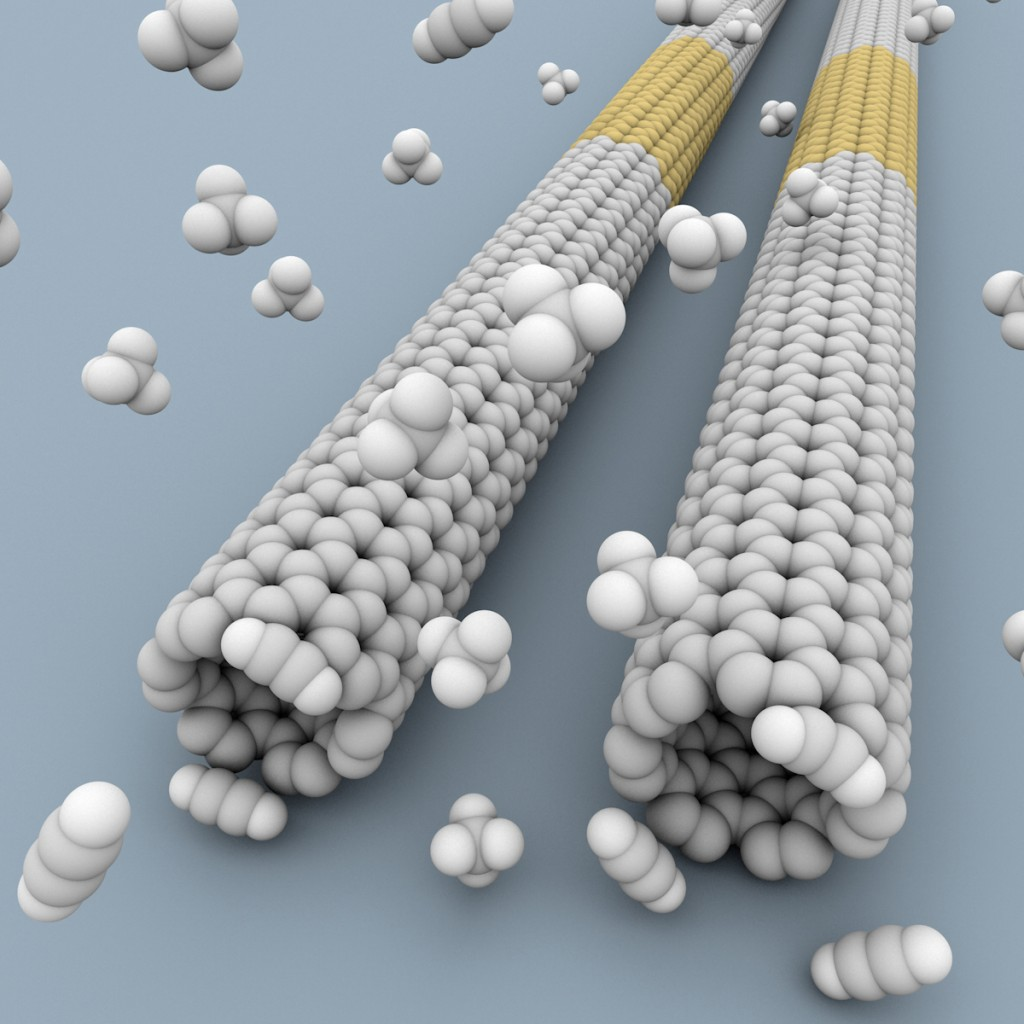 The nanotubes are tubes of graphene, which is made from sheets of carbon atoms arranged in a hexagonal pattern. (Courtesy of Chongwu Zhou and Jia Liu)