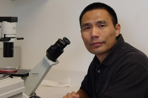 Qi-Long Ying, associate professor of stem cell biology and regenerative medicine