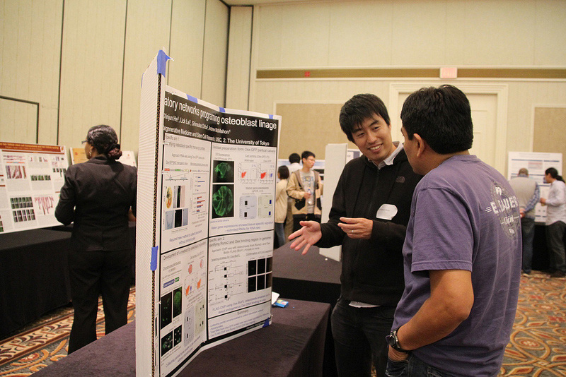 Attendees discuss poster presentations at the sixth annual retreat for the Eli and Edythe Broad Center for Regenerative Medicine and Stem Cell Research at USC. (USC Photo/Cristy Lytal)