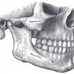 The study focused on tumors that can cause progressive enlargement of the jaw.