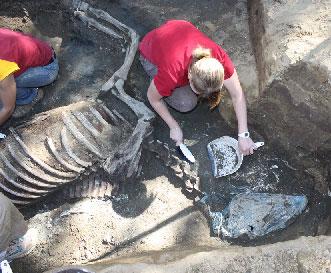 Native Diver skeleton