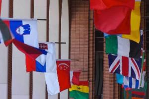 Von KleinSmid international flags