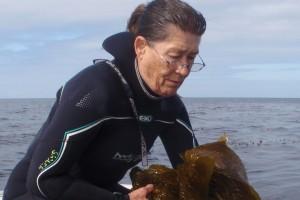 kelp watcher