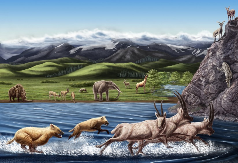pliocene epoch The age of mammals, the cenozoic, has been split into seven epochs those seven epochs are as follows: paleocene eocene  pliocene ~53-18 million years ago.