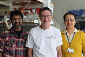 Stem cell scientists Sanjeev Kumar, Andrew McMahon and Jing Liu