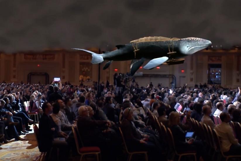 3-D virtual whale