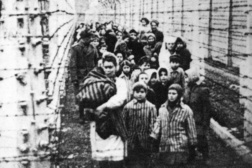 Voices of Auschwitz