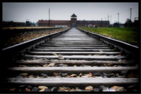 Auschwitz today