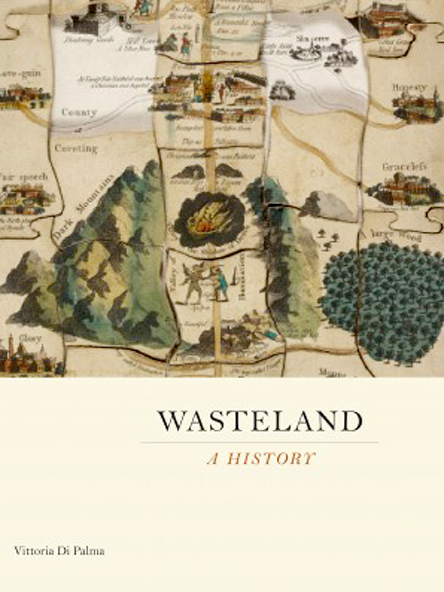 Wasteland book