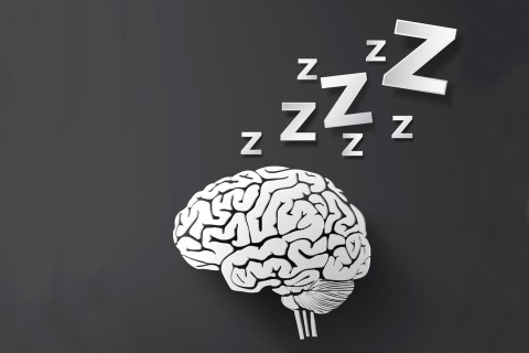 brain with Z's above illustration