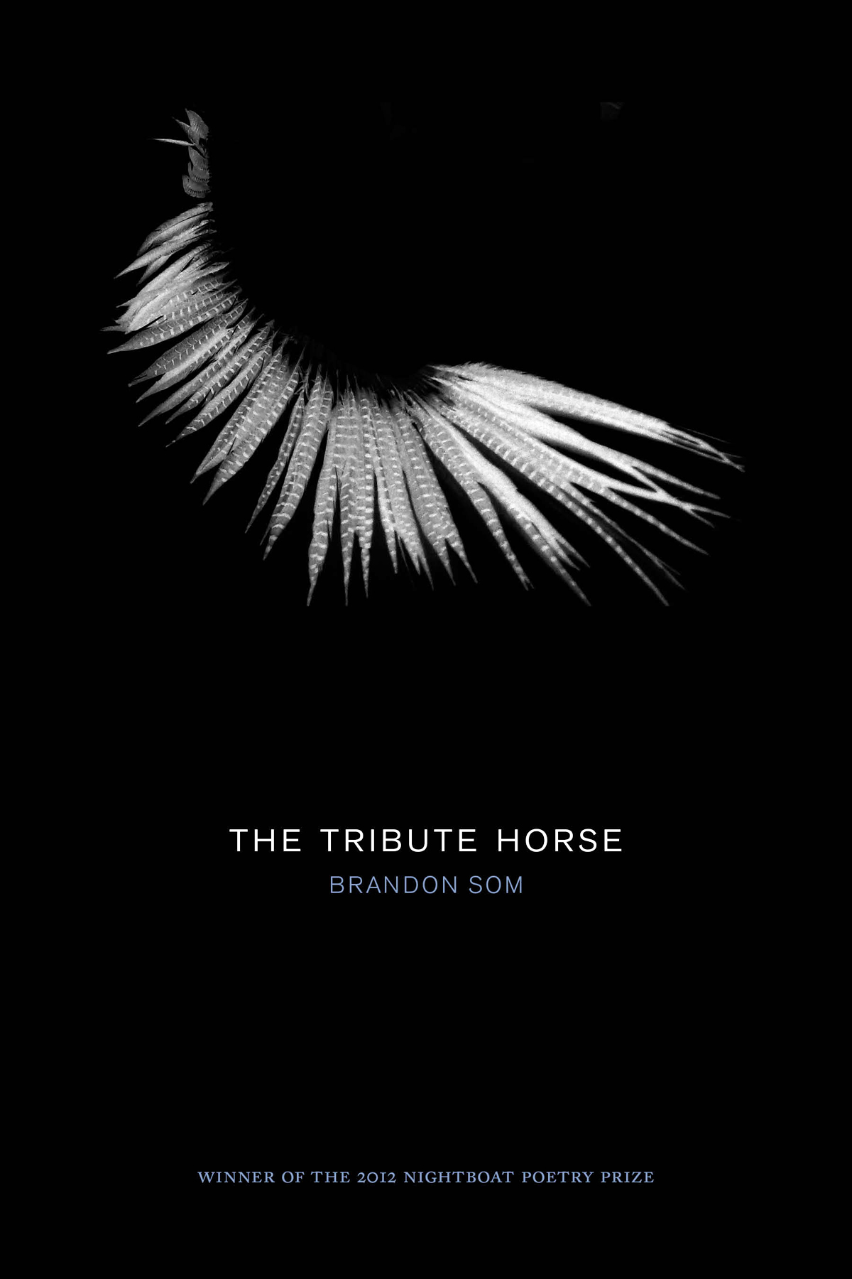 Brandon Som's debut book of poems The Tribute Horse.