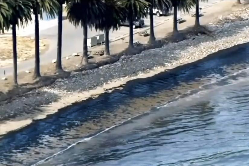 Oil blackens shore near Santa Barbara