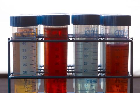 Pharmacy, Pharmacy Regulatory Science