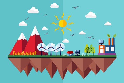 environmental graphic