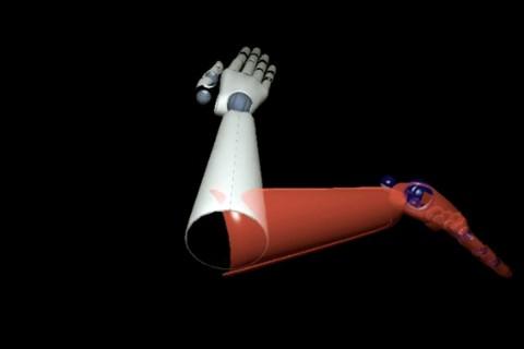 virtual arm