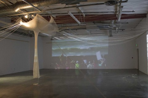 Karen Adelman exhibition