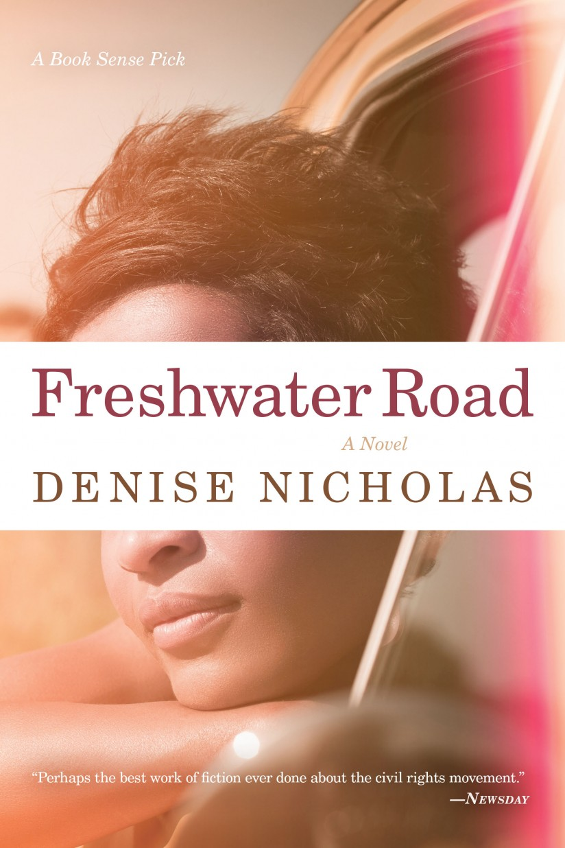 Freshwater Road book cover