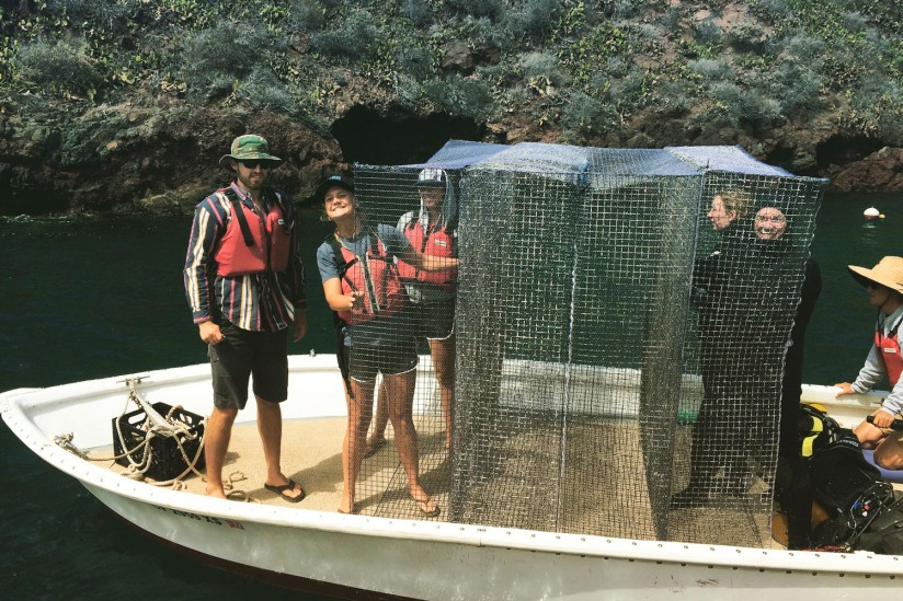 Students on boat next to cages