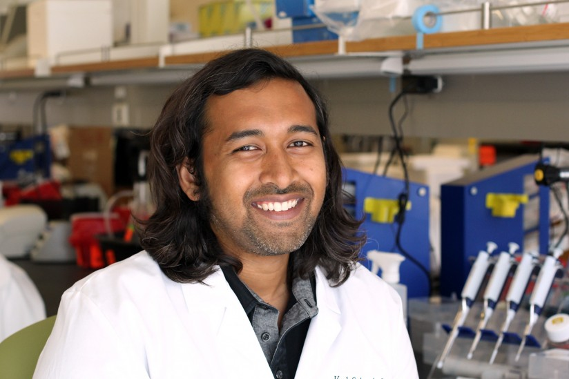 Hearst Fellow Adnan Chowdhury studies how stem cells respond to infection