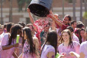 Celebration of Holi