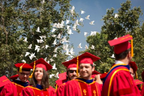 Doves flying over graduates