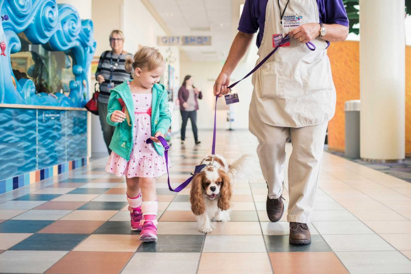 child patient and therapy dog walking halls of CHLA