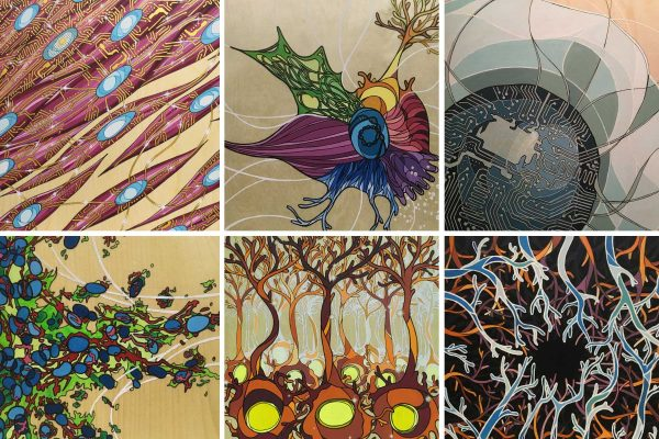 Six scientific illustrations in the style of Amanda Kwieraga