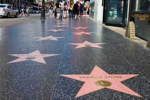 Hollywood walk of fame stars with Sharon Stone