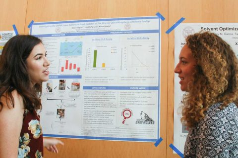 students talking about research in front of poster