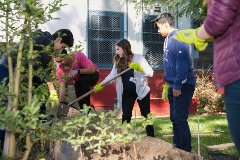 students and adults planting garden together
