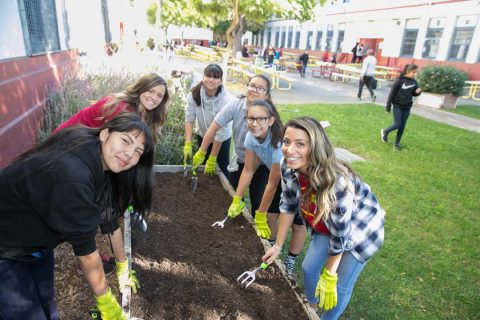 middle school students planting garden