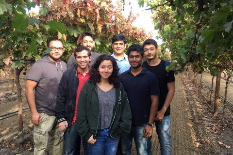 group photo of Calor team in central valley