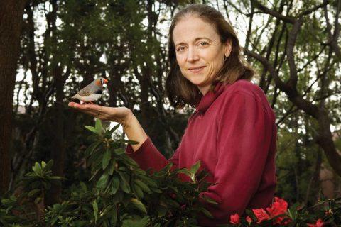 Sarah Bottjer