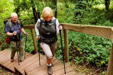 Risk of cardiovascular disease: senior men and women are healthy and active