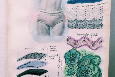 Rose Hips sketch