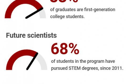 Infographic showing success of NAI scholars