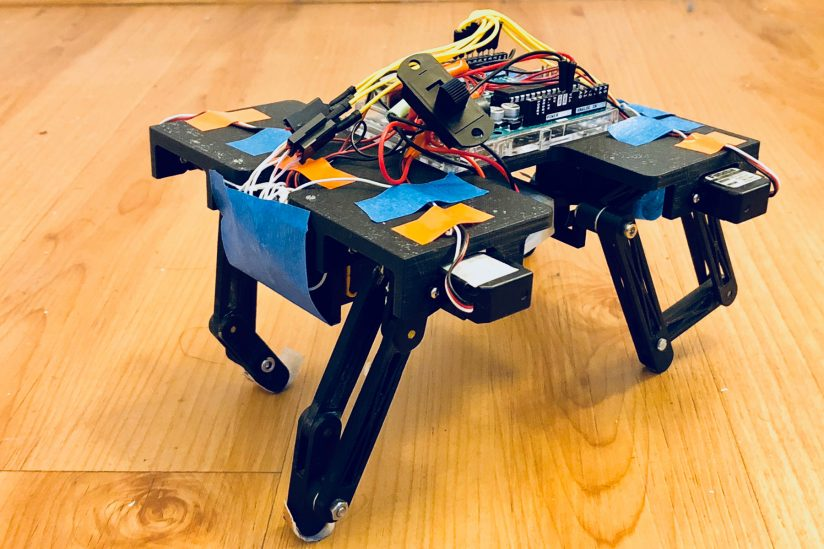 Robots mimicking animals: student biologically-inspired robot project