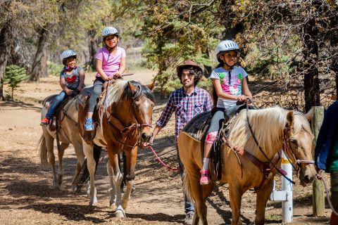 Troy Camp horseback riding