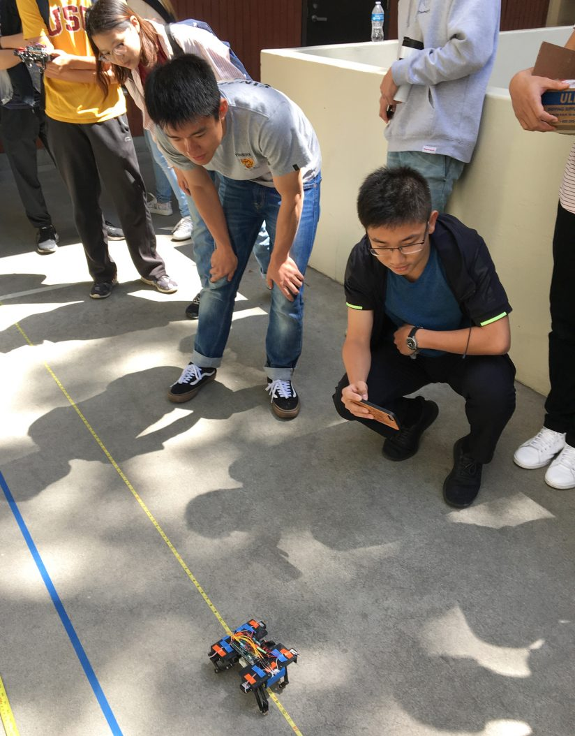 Robots mimicking animals: Class watching catlike robot student project