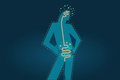 "Vagus nerve research: the ""gut-brain axis"""