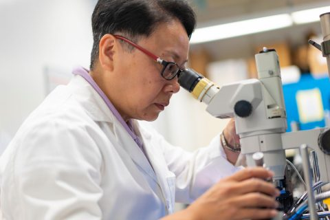 Jing Liang: Alzheimer's disease treatment and research