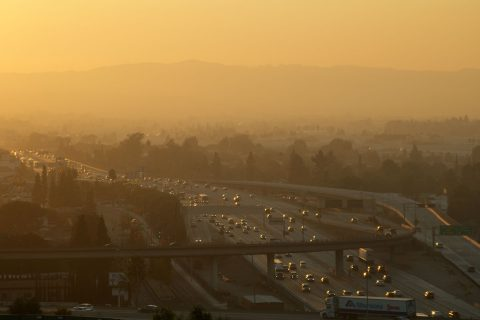 Air pollution affects thyroid: scene of Los Angeles