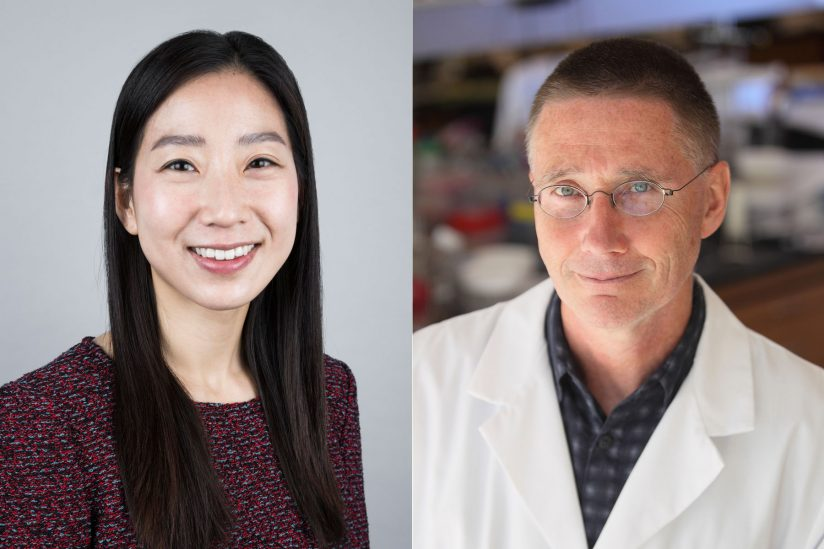 NIH new innovator and tranformative director awards