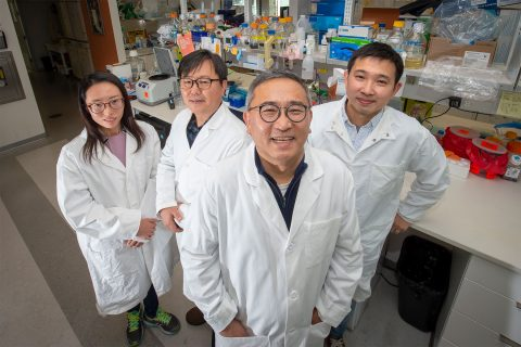 USC researchers Su-Jiu Park, Young-Ki Choi, Jae Jung and Younho Choi