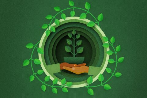 USC zero waste: Illustration